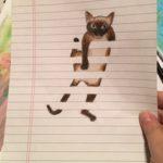 Laura Church Draw a Cat